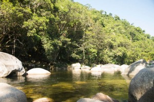 Swimming hole at Mossman Gorge