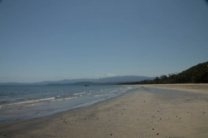 A beach off Daintree