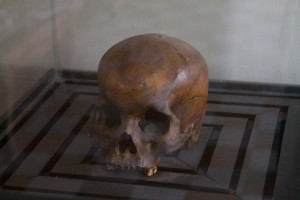 A skull found at S21