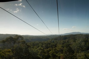 View from Skyrail