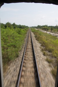 The view from the back of the train, Surat Thani to Chumphon